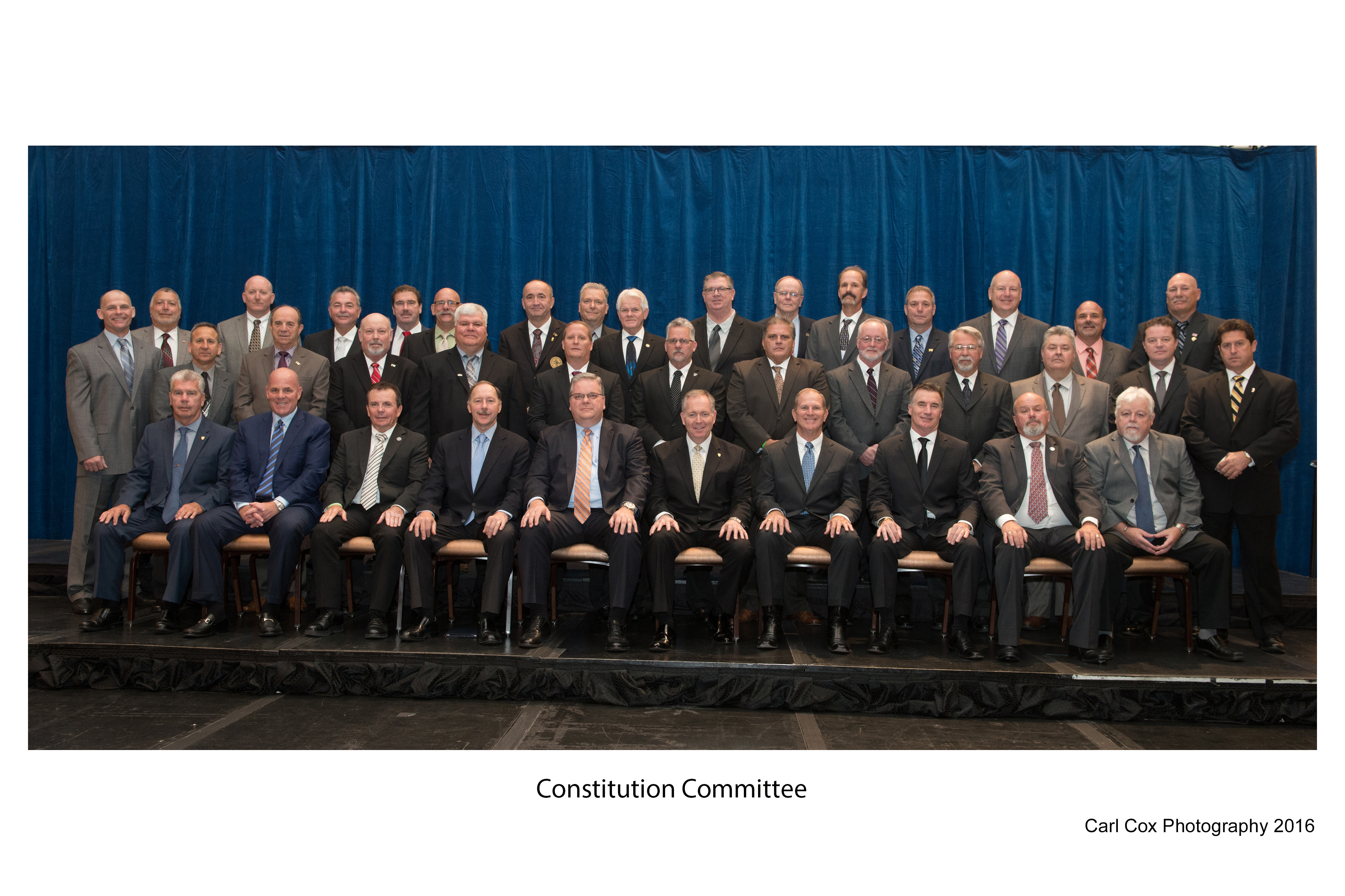Constitution Committee
